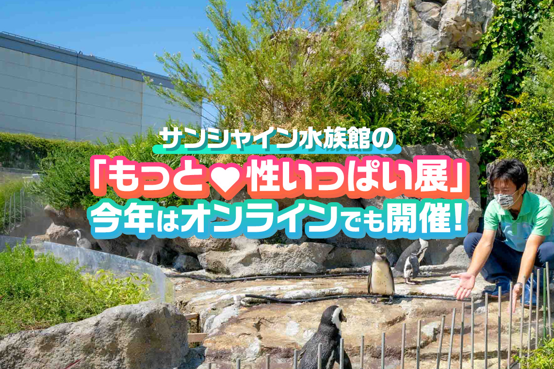 サンシャイン水族館の攻めた企画「性いっぱい展」をオンラインでも開催!水族館から全力でお届け