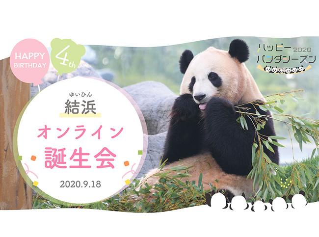 ジャイアントパンダの画像 p1_23